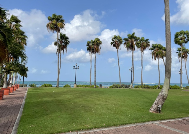 Green grass surrounded by a brick sidewalk and a row of several palm trees, the sky is bright blue and filled with clouds